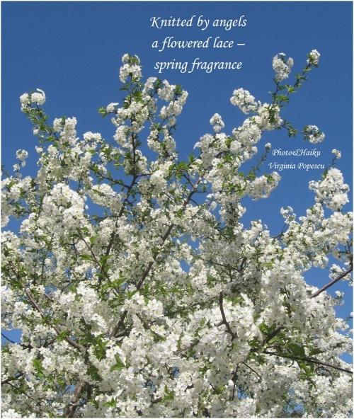 spring-fragrance